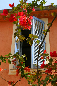 window with flowers - st tropez, provence, france